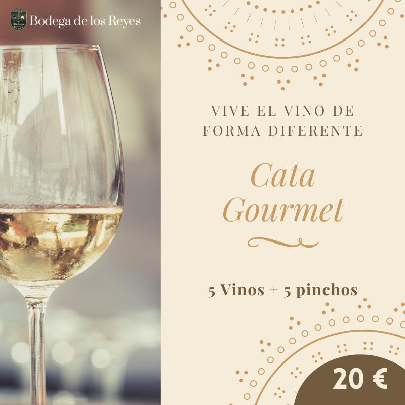 catas de vino gourmet